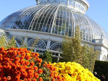 NY Botanical garden..Bronx, NY