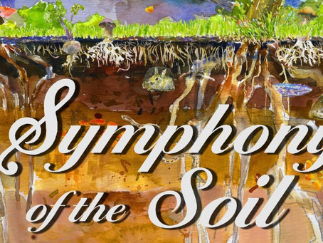 Symphony of the Soil (a movie)-TAGLINE: Discover the life beneath your feet.