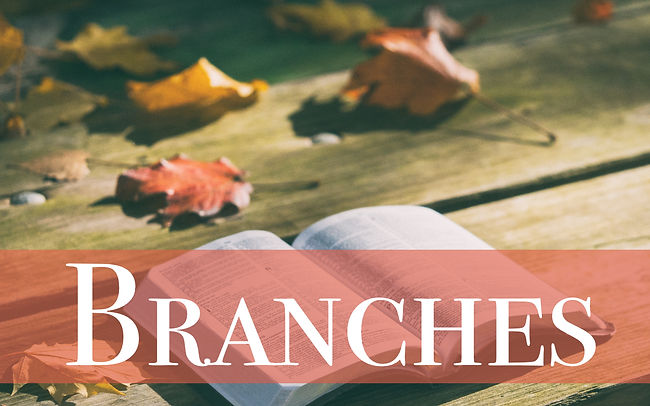Branches Life Group.jpg