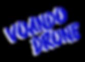 VCD_LOGO_CSB.png