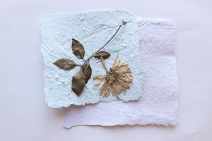'I Am Planting' Seed Paper