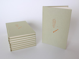 The Stairs hardcover edition