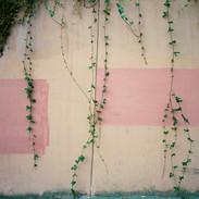 Wall Detail, San Francisco