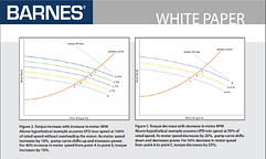barnes white paper 3.png