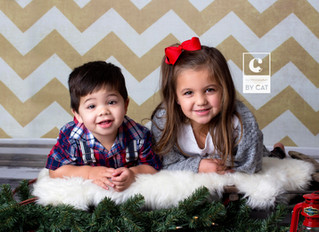 Lansing Photographer // [F] Family Mini