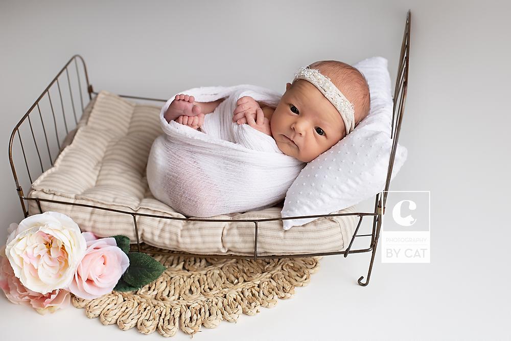 Farmingtonhills, Michigan Newborn Photographer