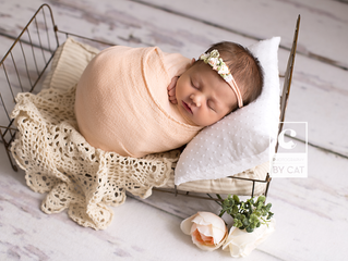 [Z] Newborn Session