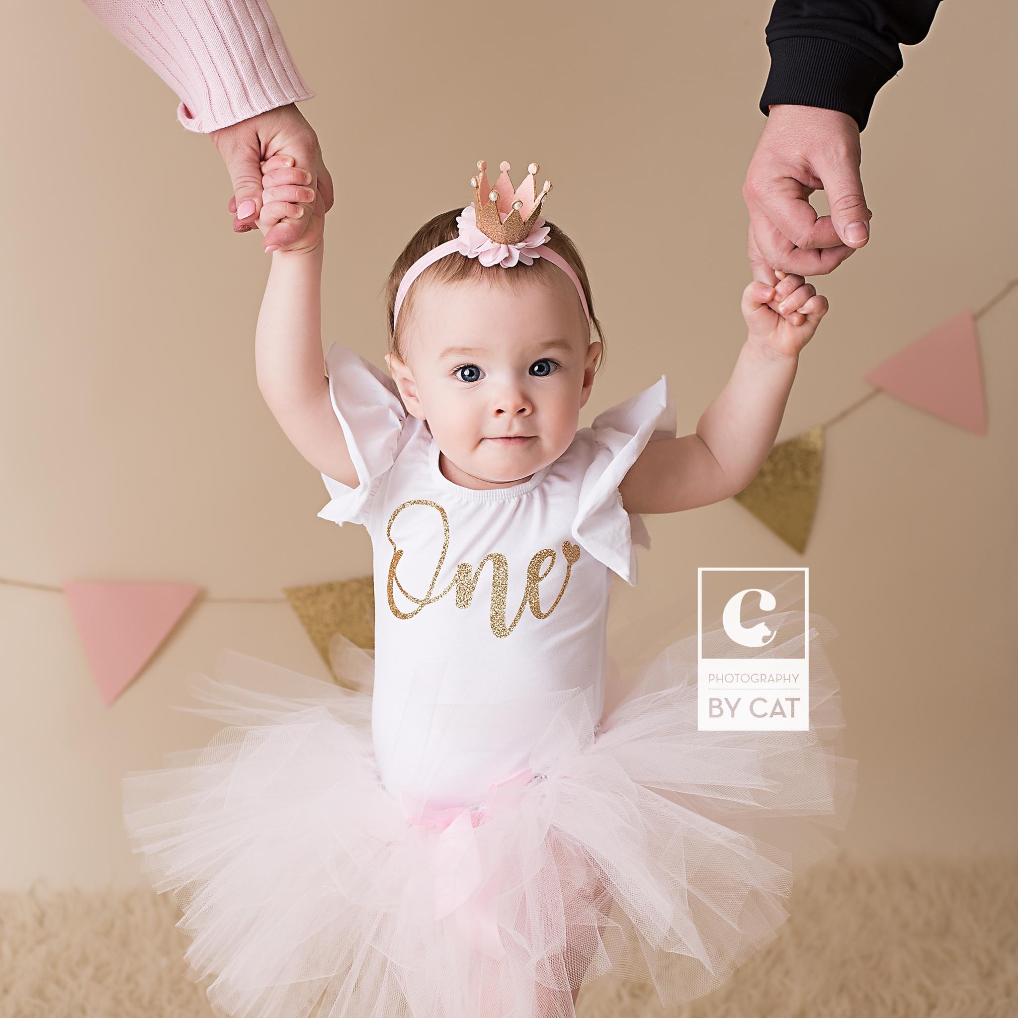 Michigan Newborn Photographer
