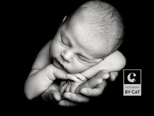 Lansing Newborn Photographer // [W] Newborn