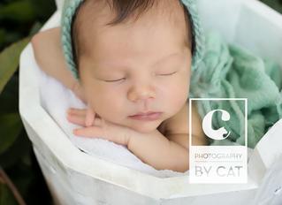 Photographer in Lansing MI // [C] Newborn