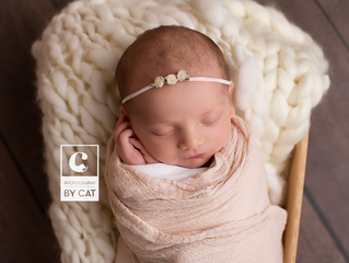 Photographer in East Lansing, MI // [O] Newborn