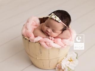 Okemos, Michigan Newborn Photographer // [L] Newborn