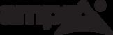 SPONSOR_Ampro Only Logo.png