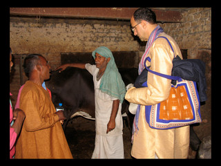 Buying a cow in Benares for a gift