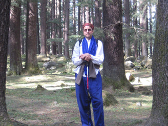 In the Deodar Forest in Old Manali