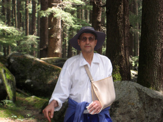 In the Deodar Forest with my broken arm