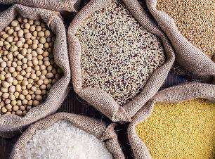 Сорта зерна