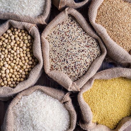 Feeding your dog healthy grains
