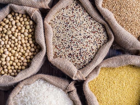 Kohlenhydrate/Getreide füttern?