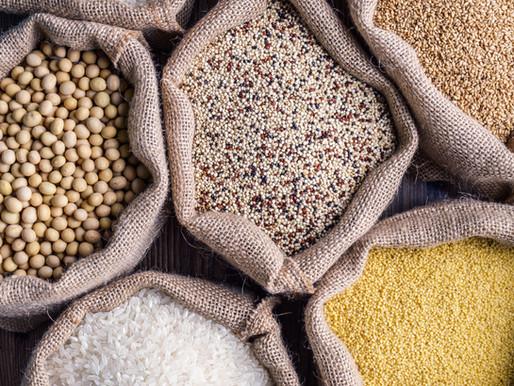 האם נכון להאכיל ממקור חלבון אחד?