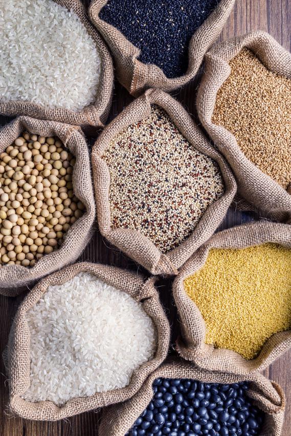 穀物の品種