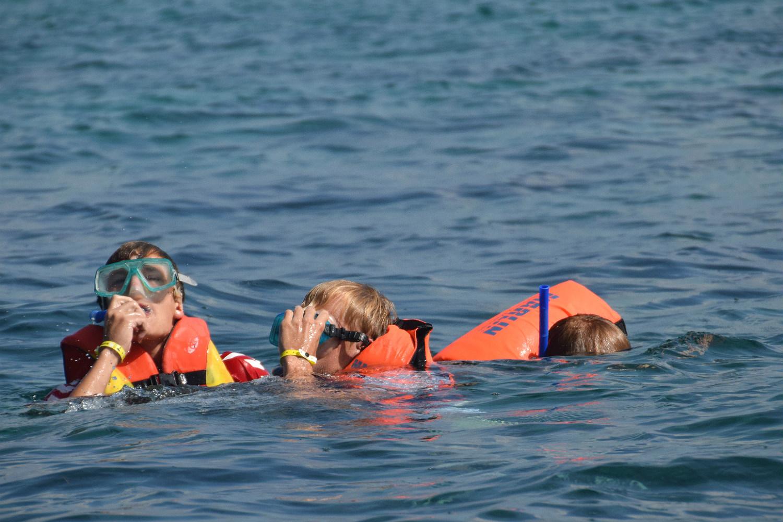 Snorkeling ved koralrevet