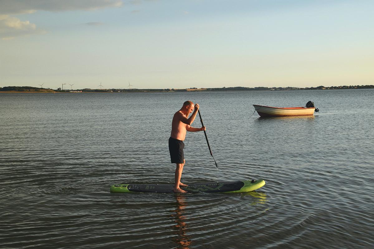 Roar øver sig på stand up paddle
