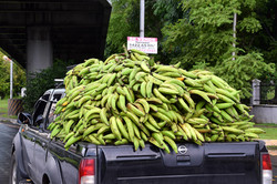 Køb bananer!