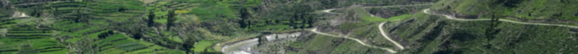 Banner Colca.jpg
