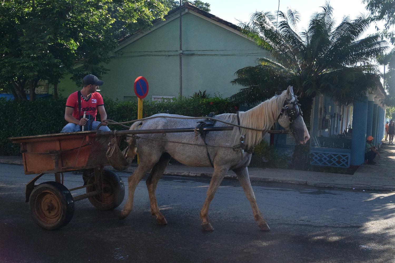 Hestevogn i Viñales
