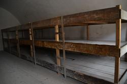 Theresienstadt senge