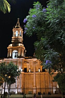Katedralen, aftenbillede