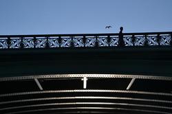 Paris bro modlys