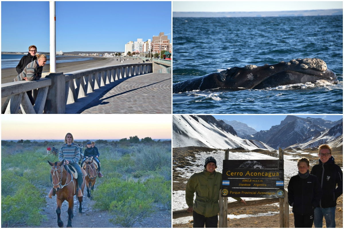 Puerto Madryn-Mendoza Collage