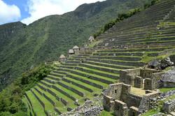 Landbrugsterrasser Machu Picchu