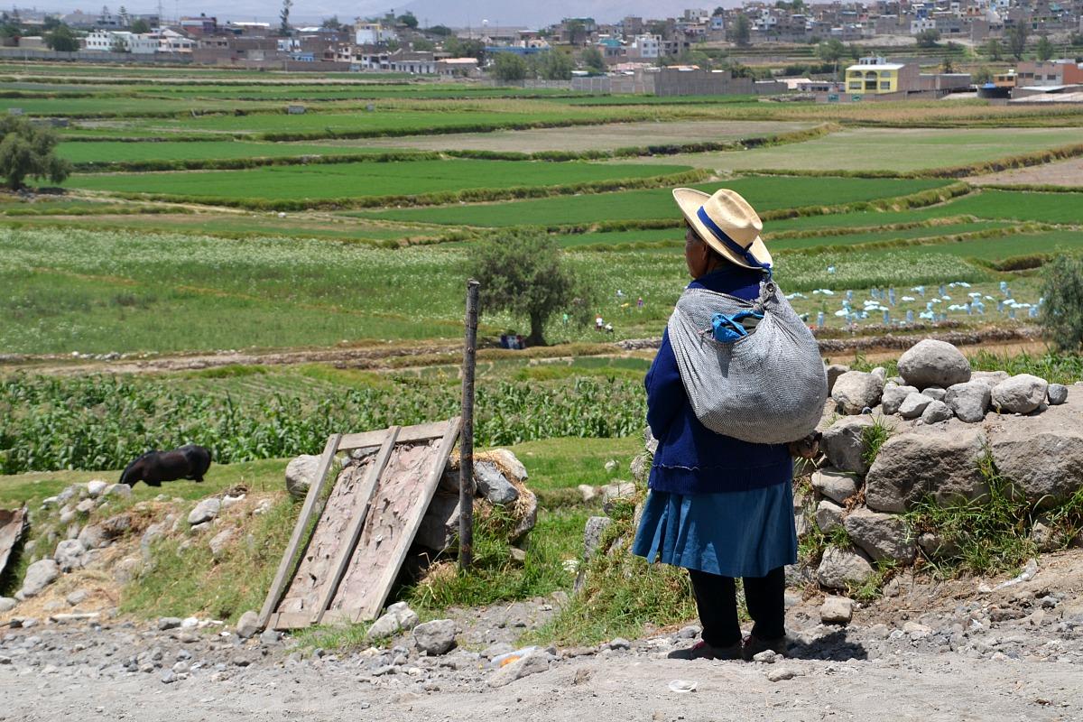 Los Andenes de Paucarpata