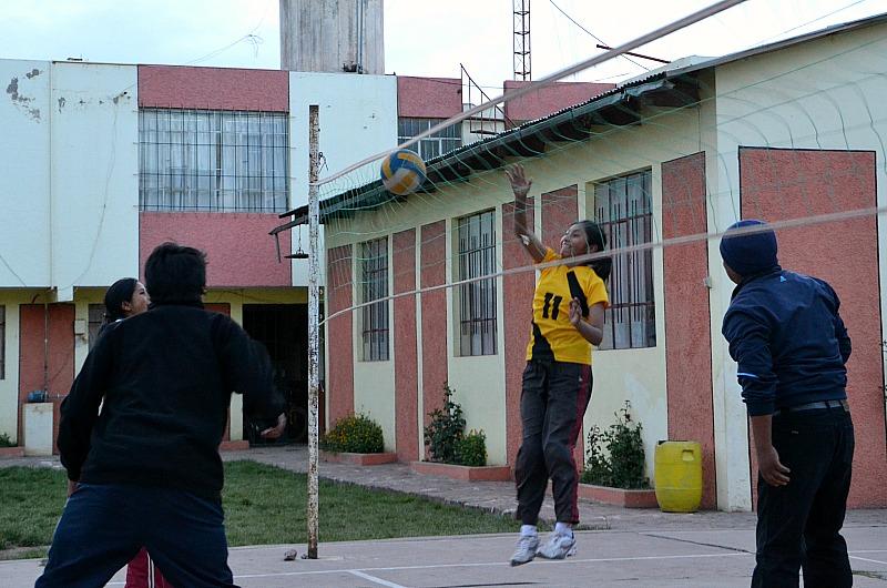 Volley 1.jpg