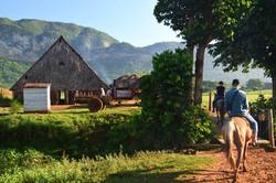Miranda-familiens gård i Viñales