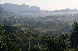 Morgendis over dalen
