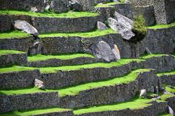 Motiv fra Machu Picchu