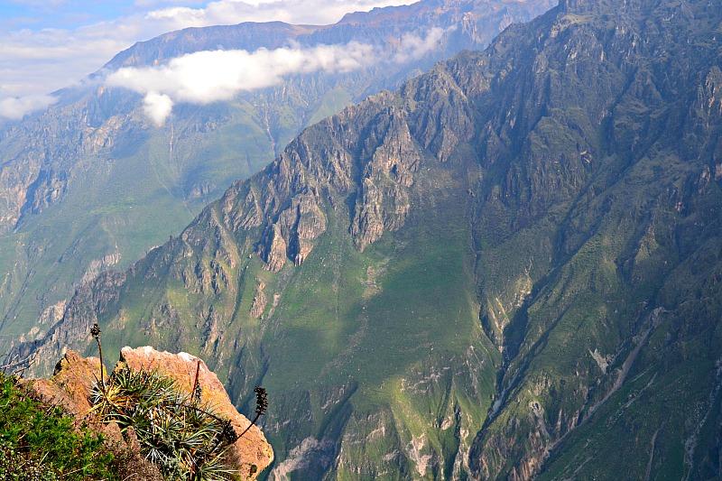 Fra Cruz del Condor.jpg