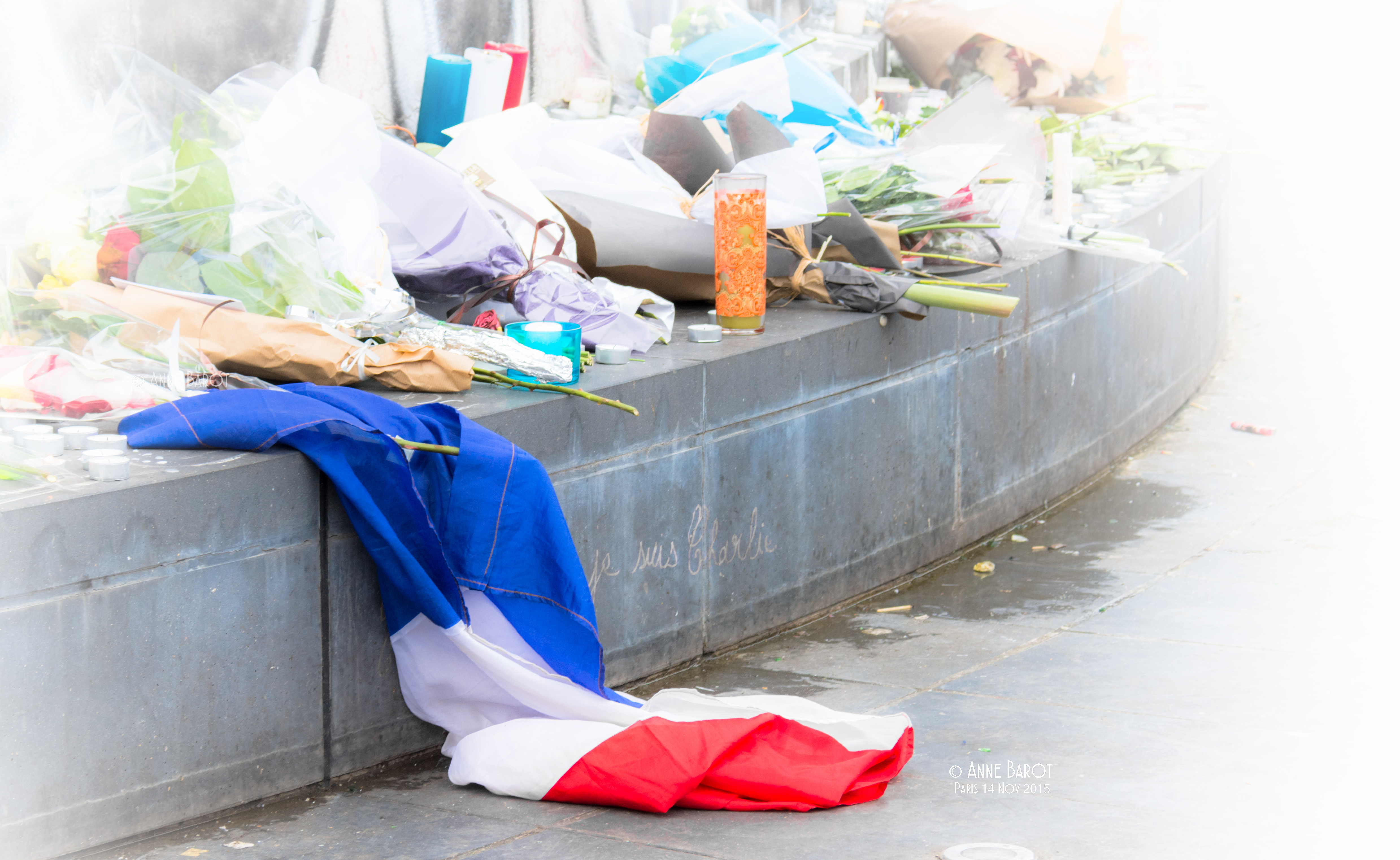 Paris Fluctuat Nec Mergitur 💙♡❤️