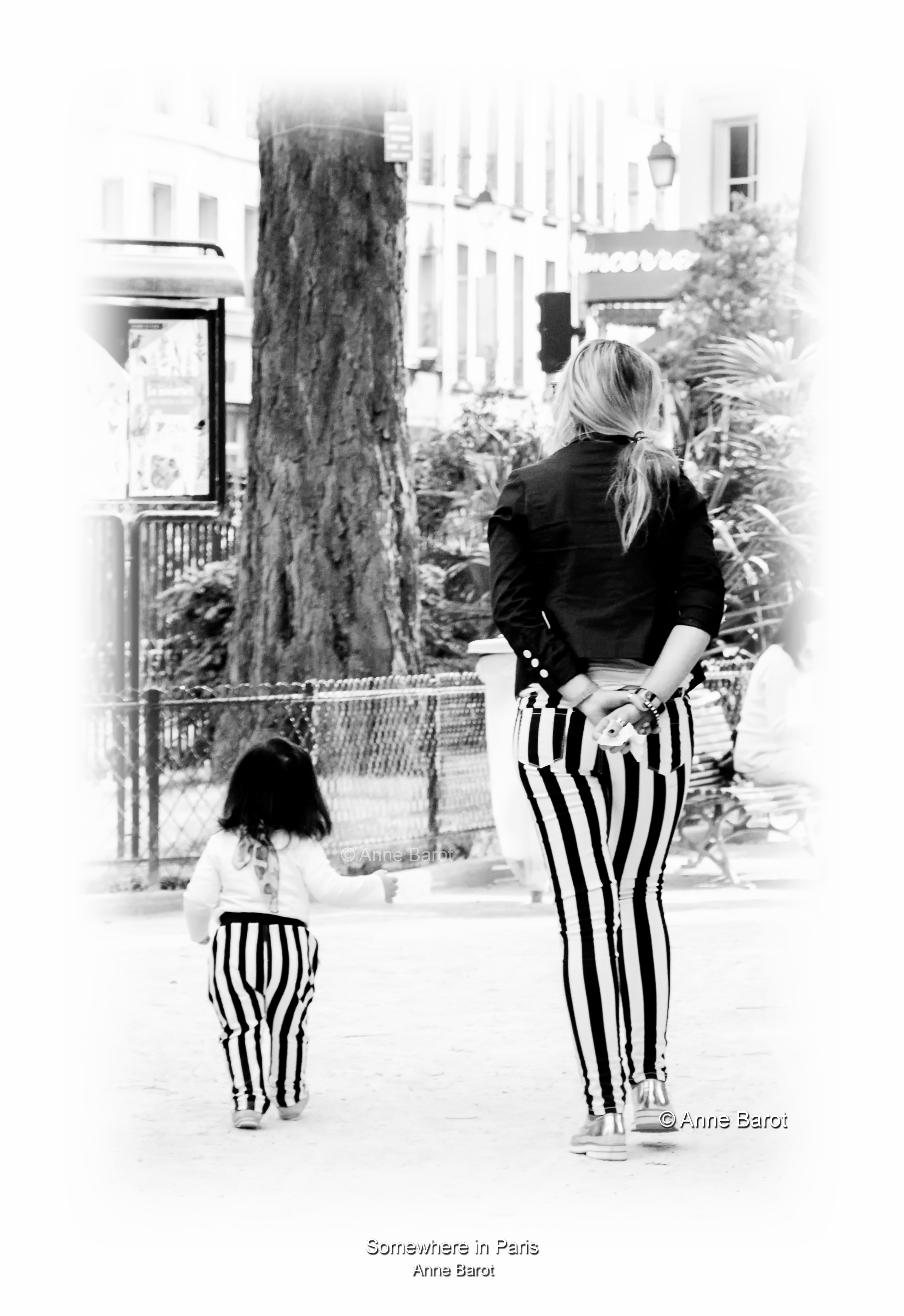 """The stripes family"""