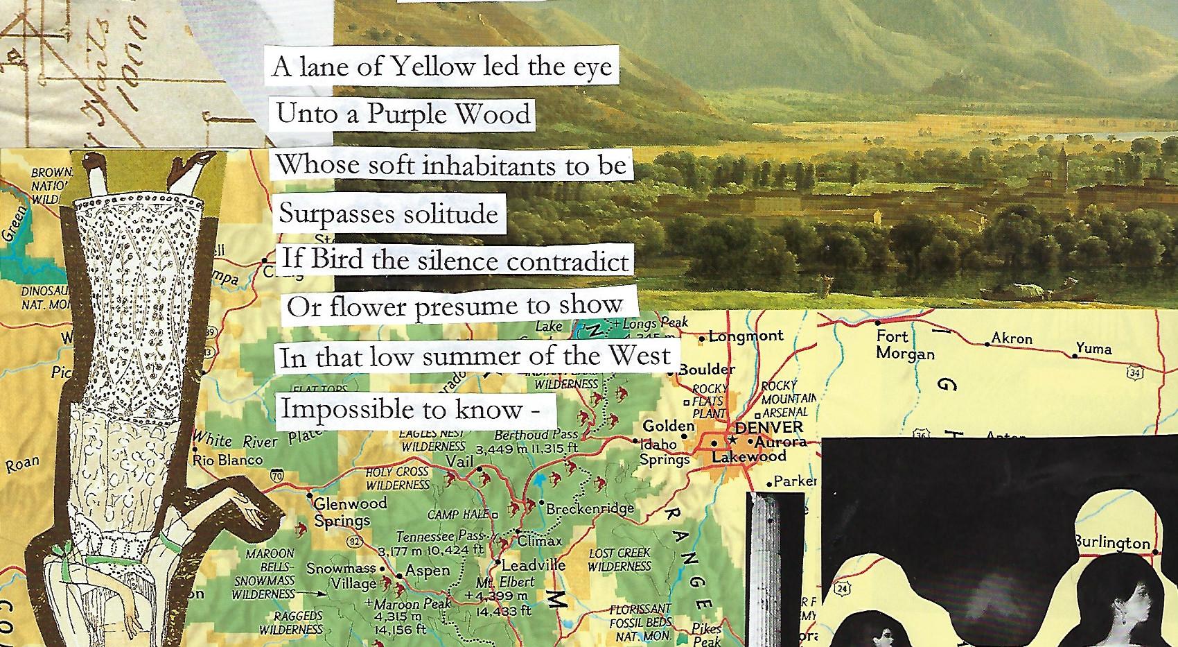 A Lane of Yellow Led the Eye