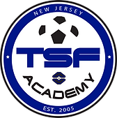 TSF Academy