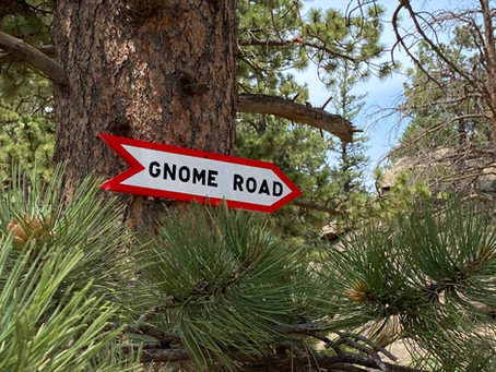 ON THE GNOME ROAD July 2021 Newsletter is out!