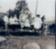 Horses and wagon with family.jpg