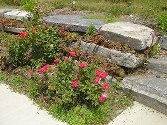 jw one stone wall.jpg