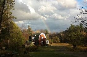 Bird Rainbow.jpg