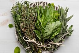 cut bundle of herbs.jpg